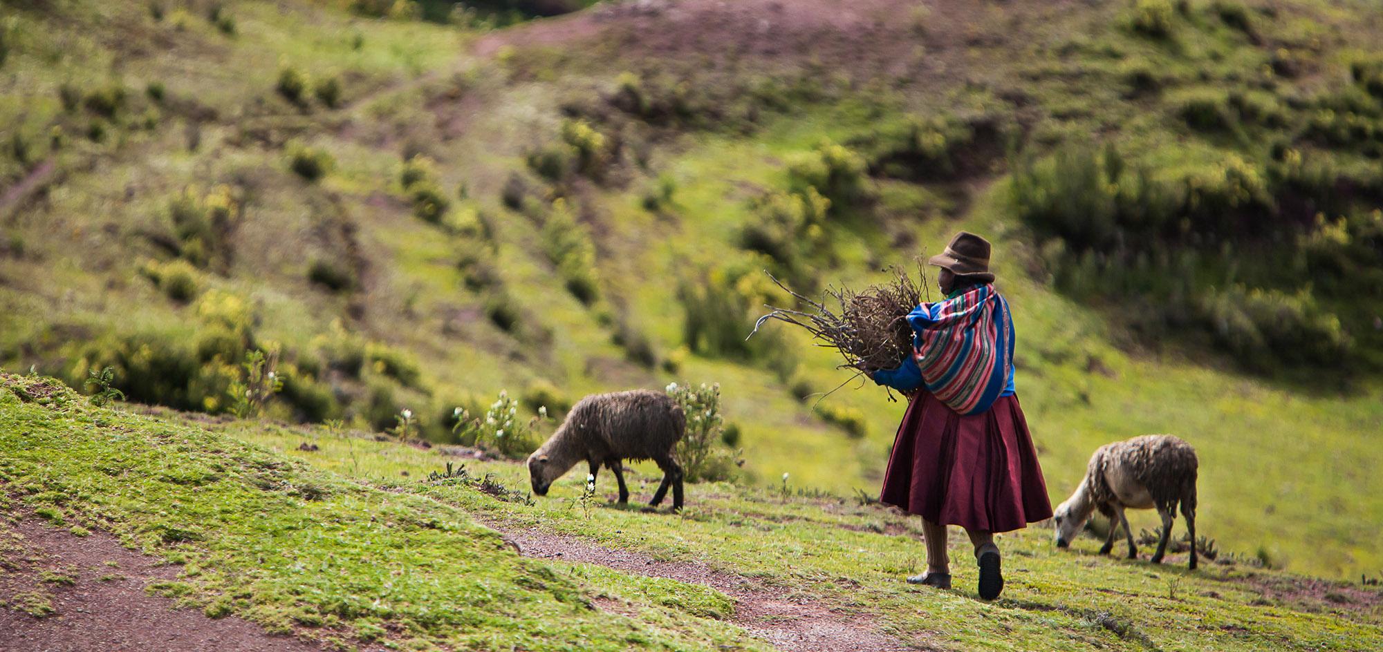 Patabamba –  Gestión de agua, agricultura y cambio climático en una comunidad campesina peruana.